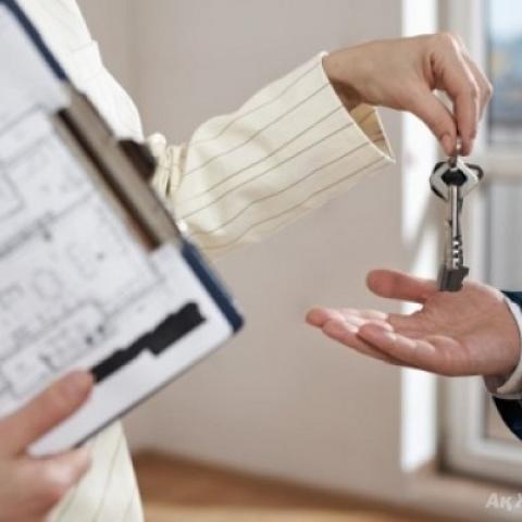 Спрос и предложение на аренду квартир в Сочи вырос